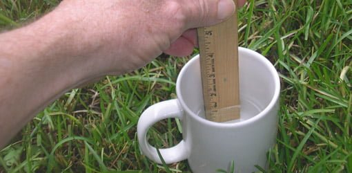 Measuring water in a cup