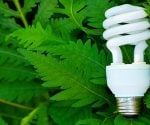Using CFLs in Light Fixtures