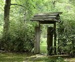 Rustic wood gate at Mountain Light Sanctuary
