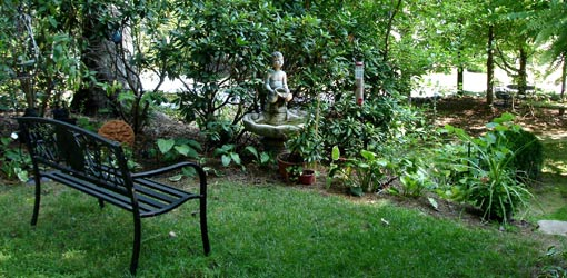 Landscaping Tips for a Bird-Friendly Yard
