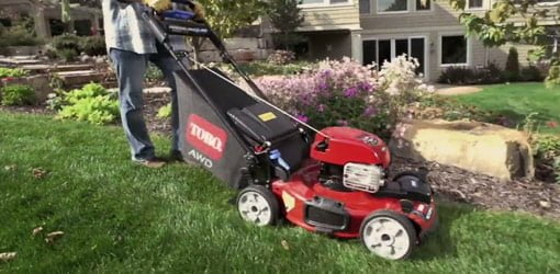 Cutting grass with Toro lawn mower.