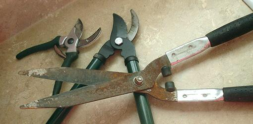 how to sharpen pruning tools today 39 s homeowner