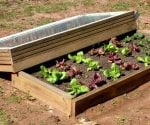 How to Make a Cold Frame to Grow Vegetables or Flowers