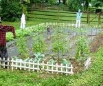 How to Plant a Family Vegetable Garden Todays Homeowner