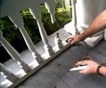 rotten porch railings