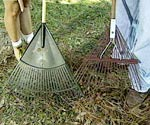 types of rakes