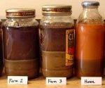 Jars with soil being tested