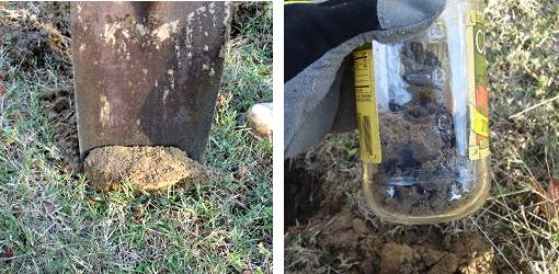 Soil being put in jar with shovel
