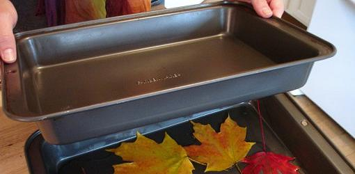 Weighing leaves down in glycerin/water solution