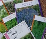 How to Start Seeds for Your Garden Indoors