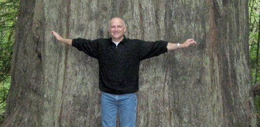 Standing at the base of a giant redwood.