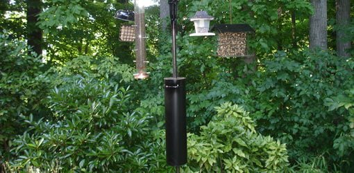 Diy Squirrel And Raccoon Bird Feeder Guard Today S Homeowner