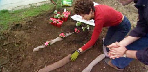 Diy Tip For Anchoring Plants On A Steep Slope In Your Yard