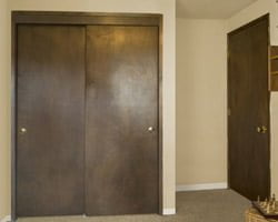 Stained hollow core doors