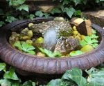 Easy DIY Water Features for Your Yard, Garden, Patio, or Deck