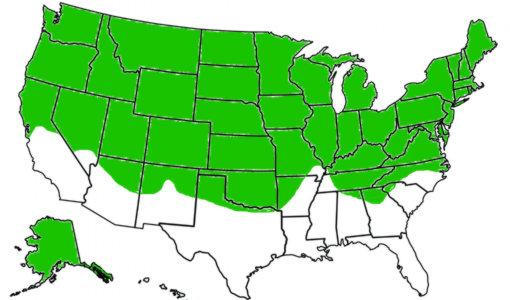 Map of the U.S. with growing region for most fescue grasses