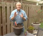 Danny Lipford standing in front of potted plants