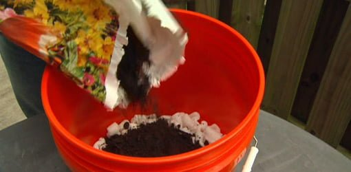 Pouring soil in a 5-gallon bucket for a container garden