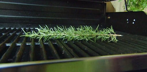 Sprig of rosemary on grill.