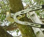 Using Fiskars Anvil Ratchet Loppers to cut tree limb
