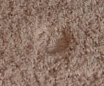 Indentation in carpet caused by furniture leg.