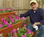 Joe Truini with stepped plant container display rack made from stair stringers.