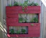 Planter made from wood pallet mounted on fence.