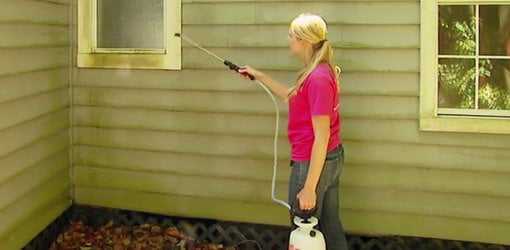 Preventing Mold And Mildew On The Outside Of A House