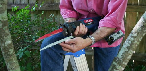 Man holding standard and pruning blades with reciprocating saw.