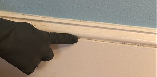 Use a solution of liquid fabric softener and water to clean baseboards.