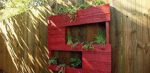 Small-space gardening ideas from Southern Patio.