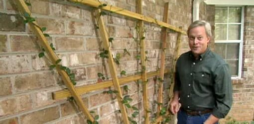 how to make a fan trellis for your yard todays homeowner