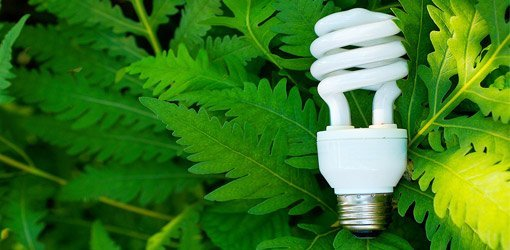 Using CFLs in Light Fixtures | Today\'s Homeowner