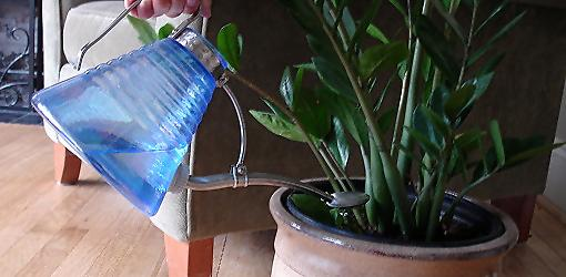 Tips On How To Water Houseplants Today S Homeowner