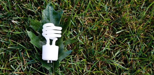 CFL Bulb With Grass Part 94