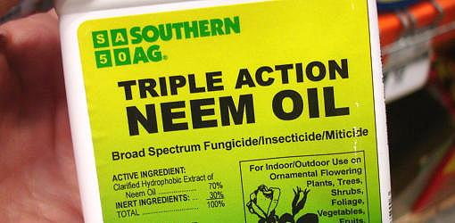 how to use neem oil in your garden today 39 s homeowner. Black Bedroom Furniture Sets. Home Design Ideas