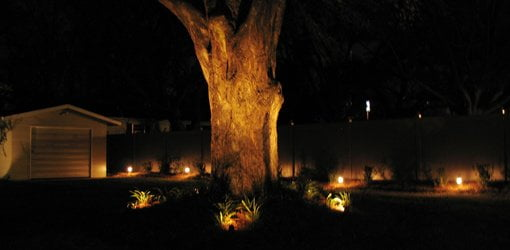 How to install low voltage landscape lighting in your yard todays oak tree at night with landscape lights aloadofball Choice Image
