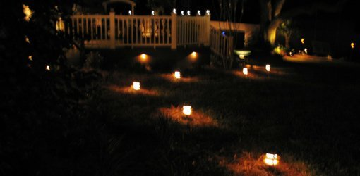 Yard And Deck At Night Lit By Landscape Lighting.