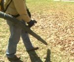 Using gas powered backpack leaf blower in yard.