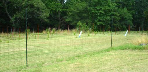 How To Install A Deer Proof Fence Around Your Yard Or
