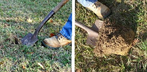 digging soil sample with shovel