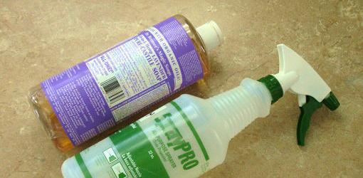 Diy house plant bug spray