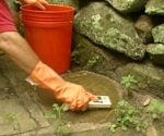 Moss being removed from stones with scrub brush and bleach