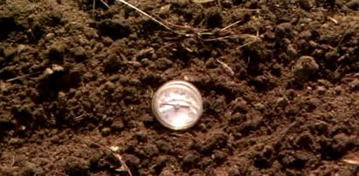 meat thermometer in soil