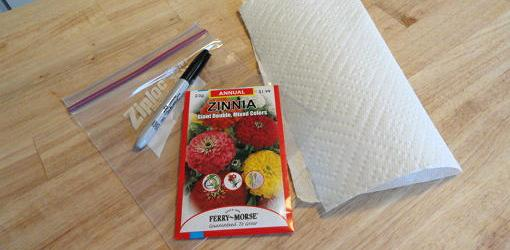 Seeds, marker, baggie, and paper towel