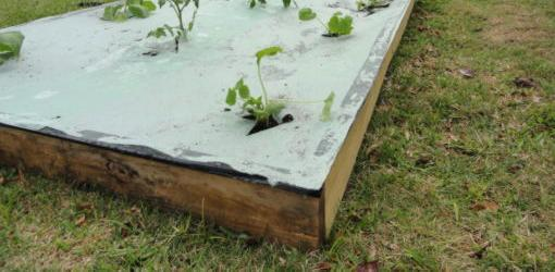 Wood raised bed with weed barrier on top
