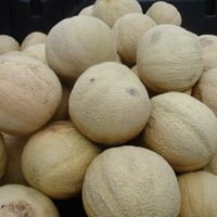 Cantaloupe for sale at fruit stand