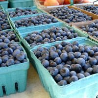 Blueberries for sale at fruit stand