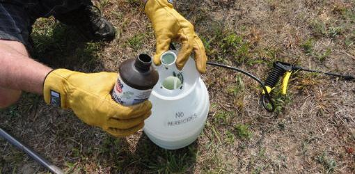 Mixing Bt in a pump up sprayer