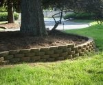 Curved retaining wall around tree